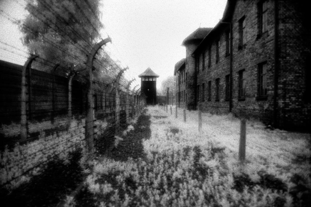 """Judy Glickman Lauder Auschwitz extermination camp, Poland, 2018 Archival Pigment print 18 x 22"""""""