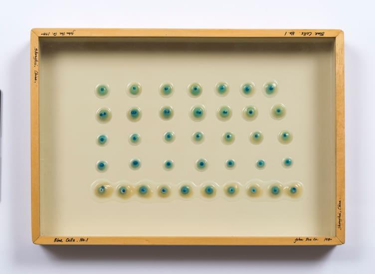 Carl Cheng, Liquid/Solid Series: Blue Cells No. 1, 1980