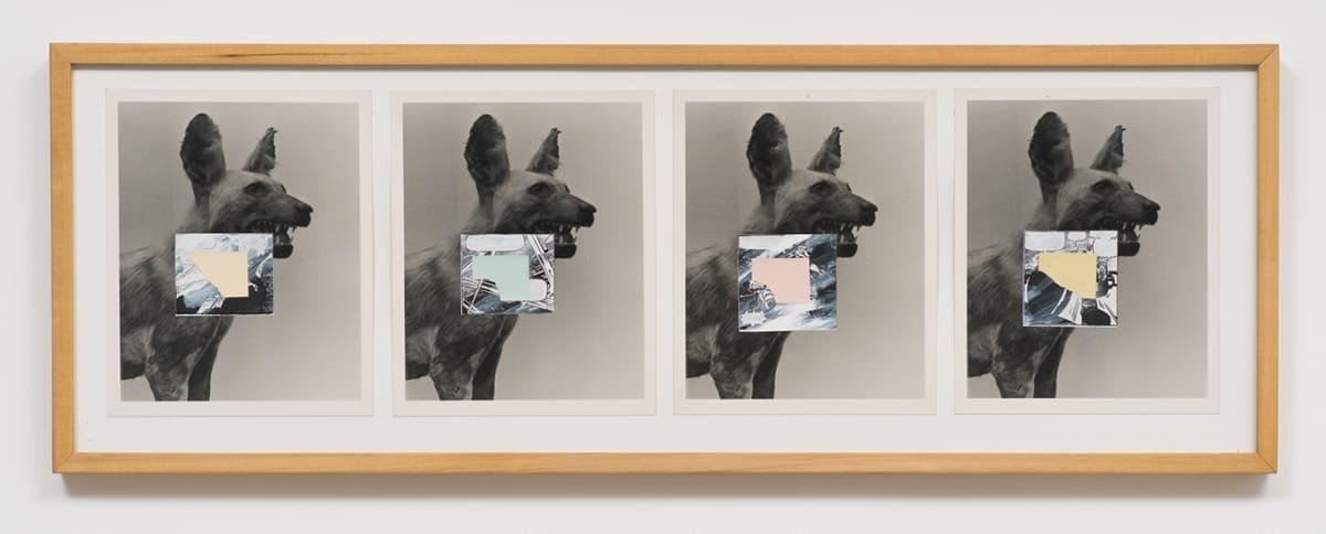 Pat O'Neill, Untitled (Dingo 4), 1980