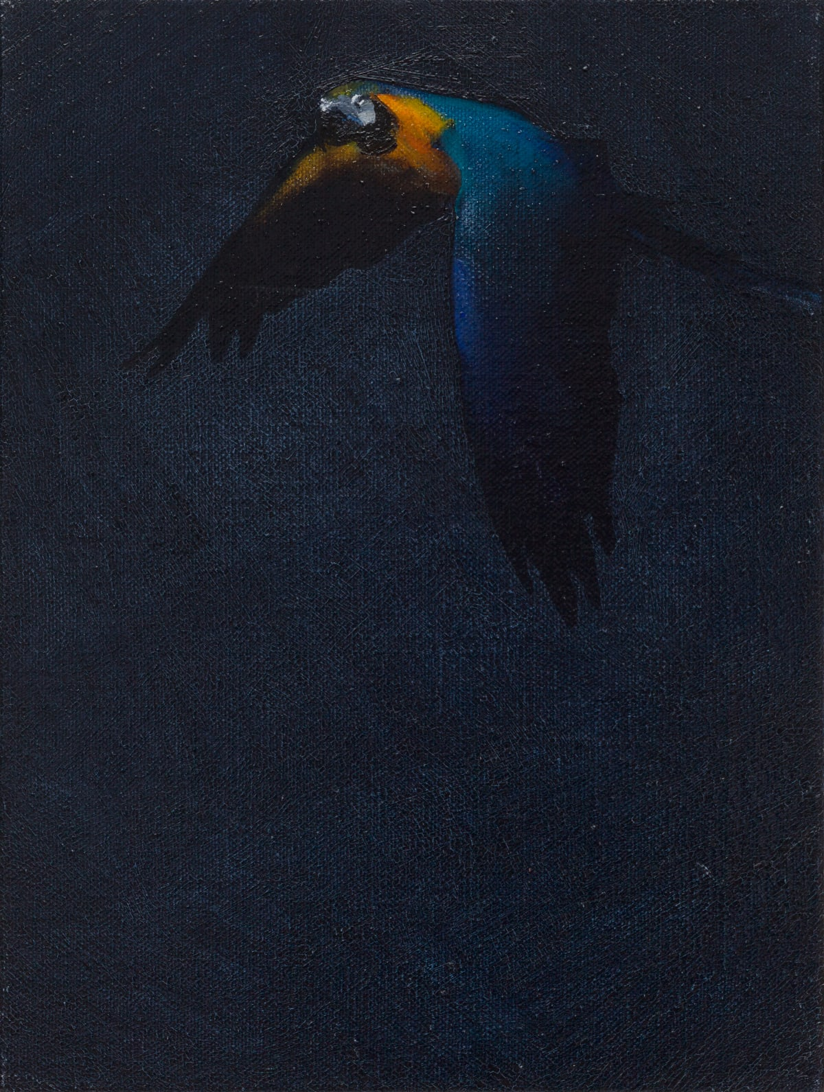 Matthew Kentmann, Blue & Gold 5, 2019