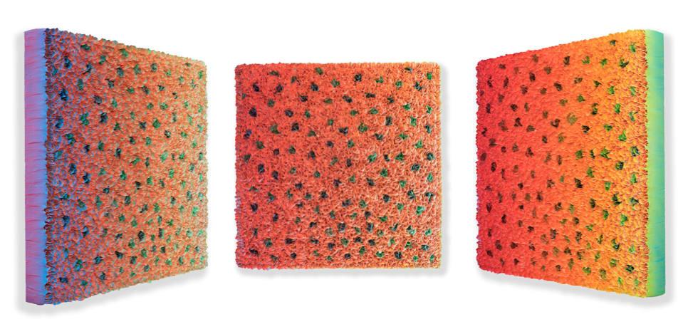 Zhuang Hong Yi, Flowerbed Colour Change #B19-20, 2019