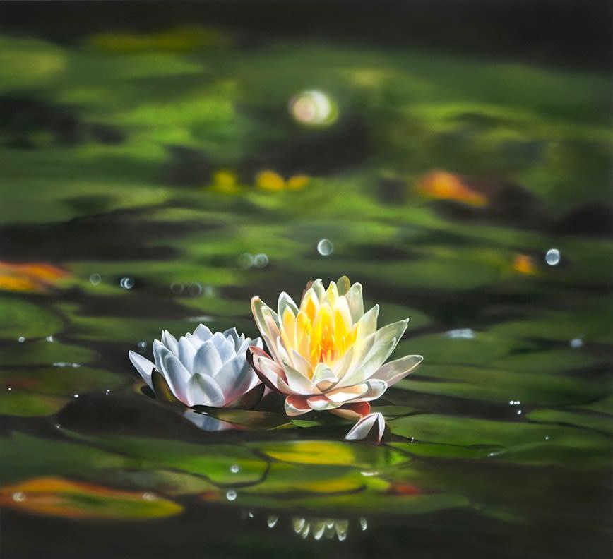 Ben Schonzeit Water Lily Acrylic on polyester 112 x 122 cm