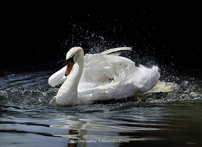 Alexandra Klimas Beauty the Mute Swan Oil on canvas 90 x 120 cm