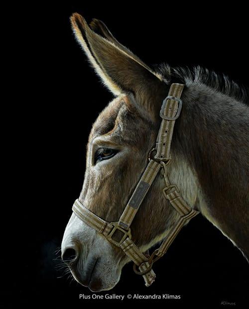 Alexandra Klimas Hope the Donkey Oil on canvas 100 x 80 cm