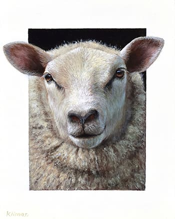 Alexandra Klimas Miniature painting, Daisy the Sheep Oil on panel 15 x 12 cm