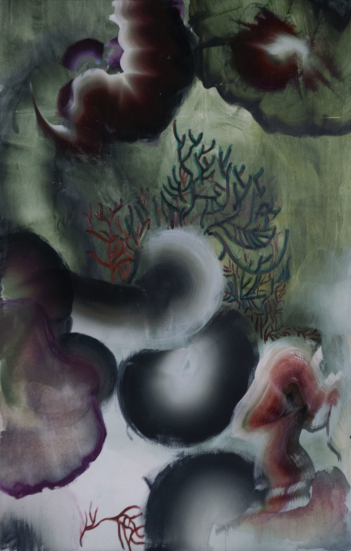 Sophie Steengracht, Photosynthesis