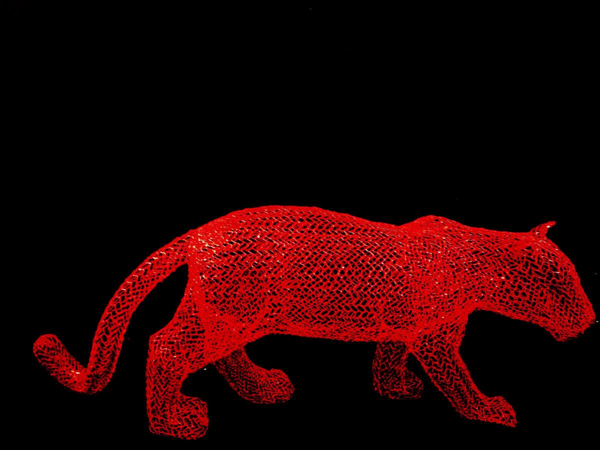 Eka Acosta, Red Jungle Cat, 2018