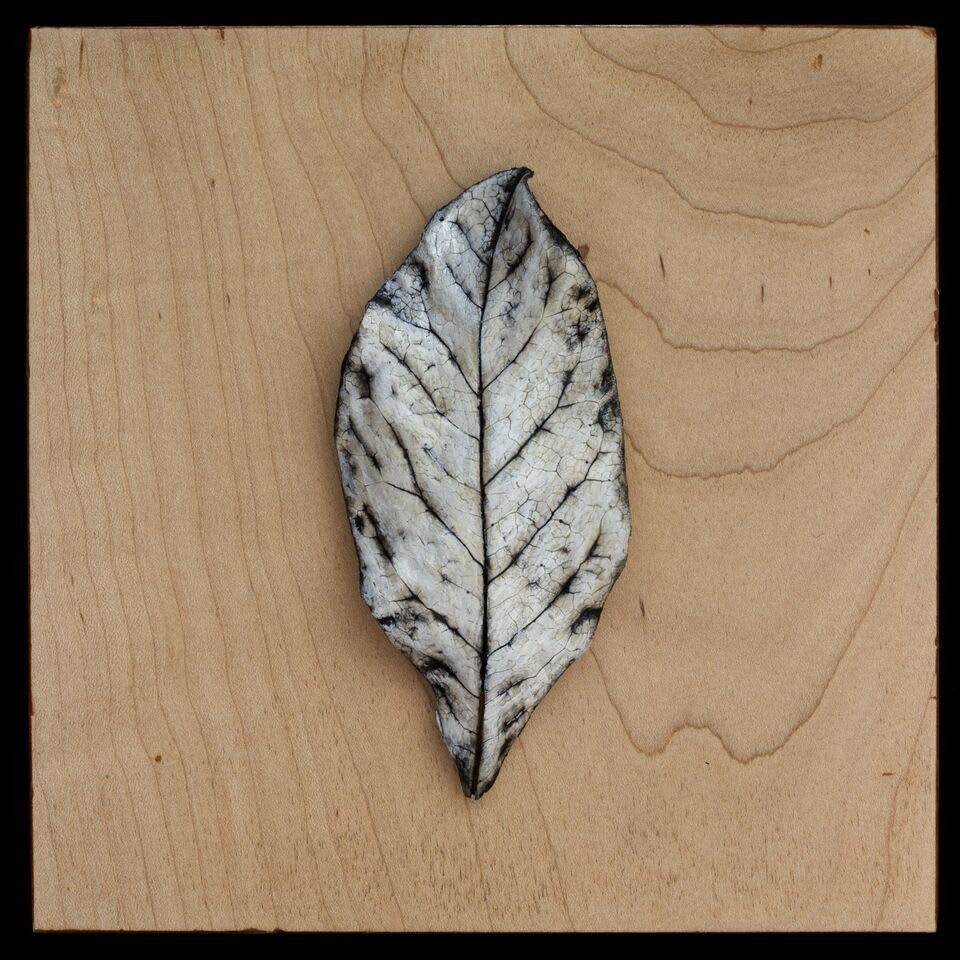 Cast Leaves