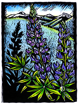 Claire Emery, Lupine: Wonderful Moment, 2016