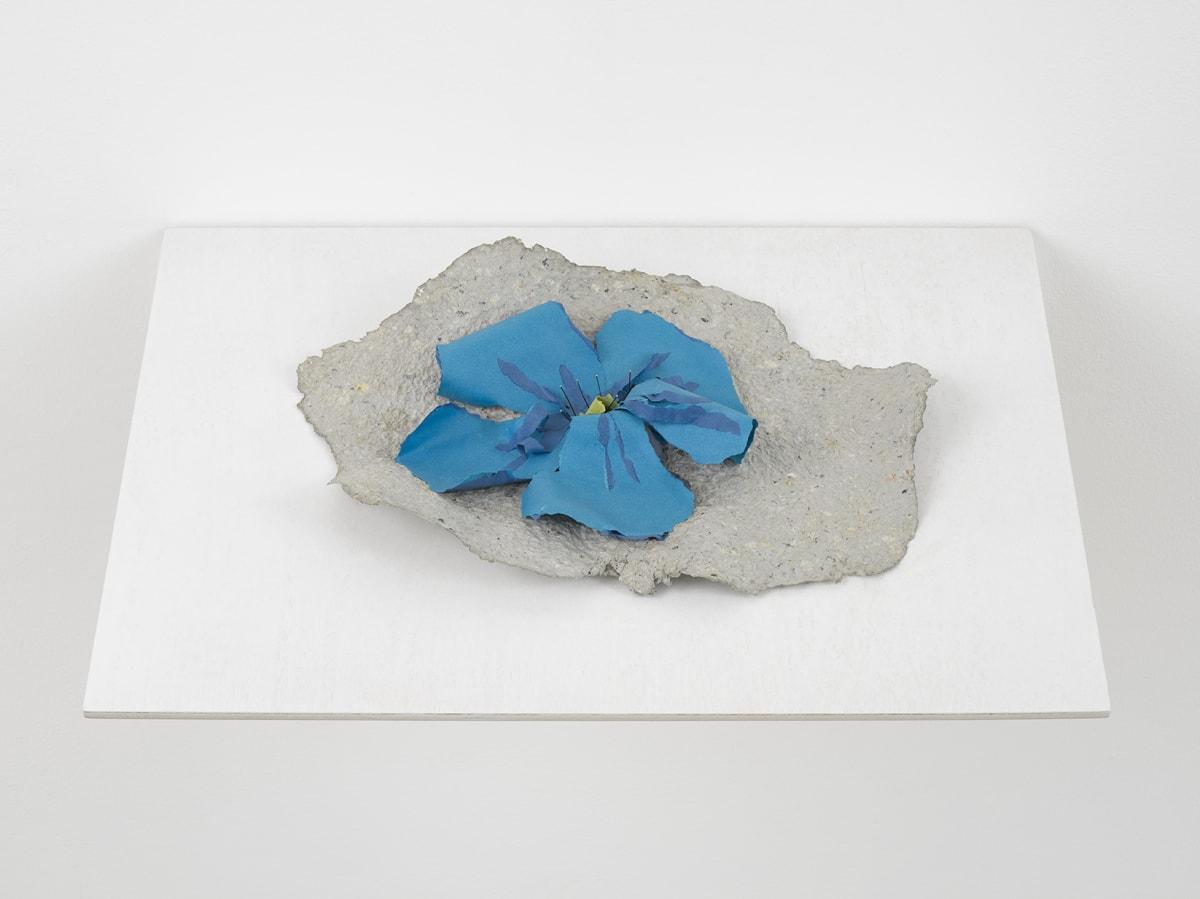 Lili DUJOURIE Ballade - Linum, 2011 Papier-mâché 27 x 38 x 7.5 cm