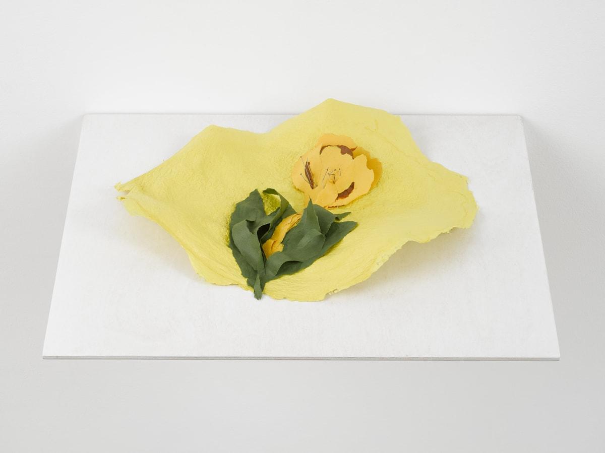 Lili DUJOURIE Ballade - Primula, 2011 Papier-mâché 33 x 44 x 7 cm