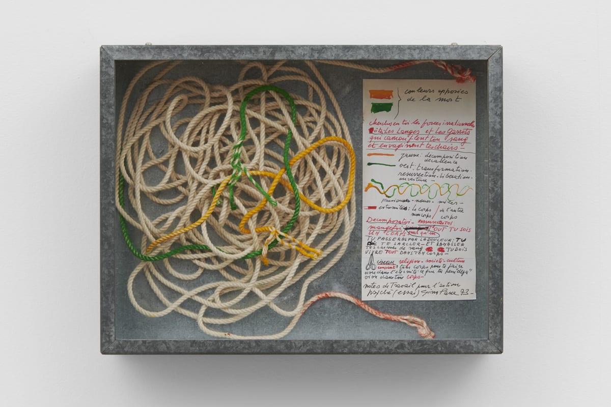 Gina PANE Psyché, 1974 Ephemera from 'Action Psyché' (1974) contained in a metal and glass case 34 x 43 x 10 cm Unique