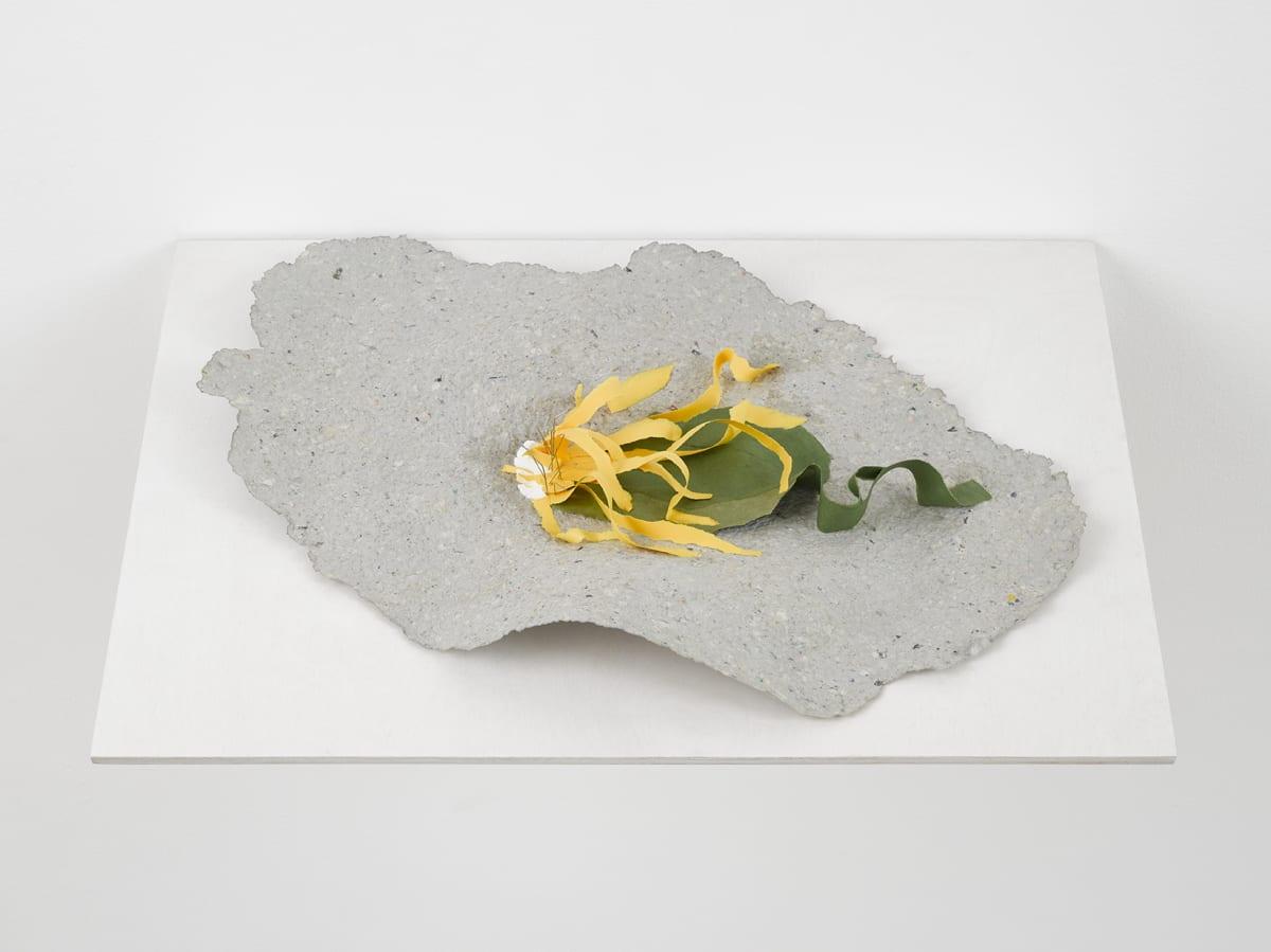 Lili DUJOURIE Ballade - Arnica, 2011 Papier-mâché 33 x 51 x 6.5 cm