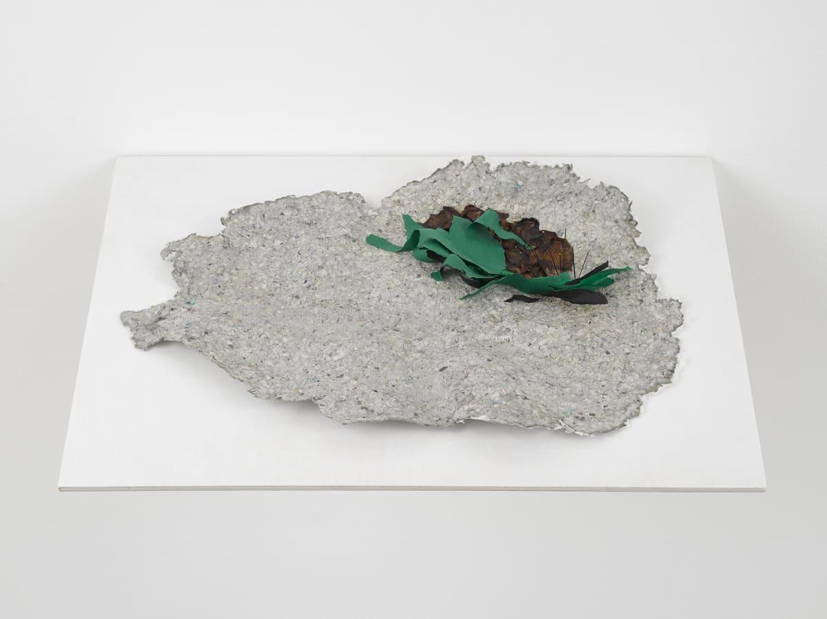 Lili DUJOURIE Ballade - Nuits de Young, 2011 Papier-mâché 35 x 49 x 4.5 cm