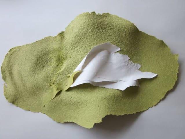Lili DUJOURIE 1941 - Ballade - Helleborus Niger, 2011 Paper mache Unique 30 x 46 x 4.5 cm