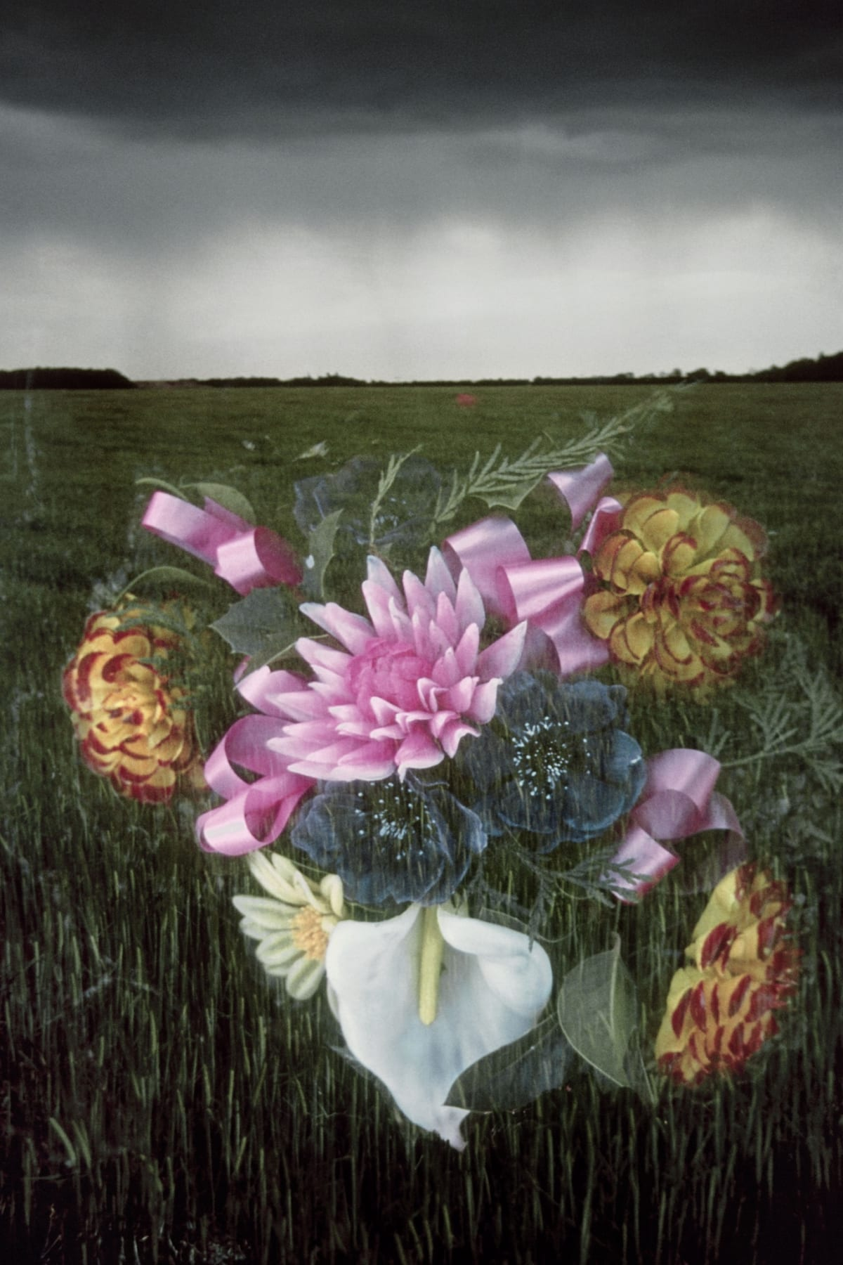 Jo SPENCE The Final Project [Flowers], 1991 - 1992 Digital print from medium format colour neg 134 x 90 cm Edition of 2 plus 1 Estate Copy