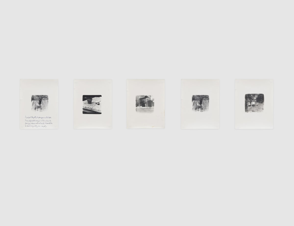 Shelagh WAKELY Untitled [I had put the pot of hydrangeas on the table], 1974-79 Set of 5 gelatin silver prints Each sheet: 21.5 x 16.5 cm Each image: 8 x 8 cm