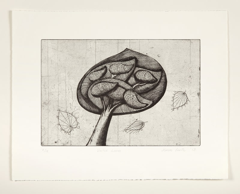 Marion Smith RSA United Leaves, 2013 Etching 20 x 30 cm Edition of 12