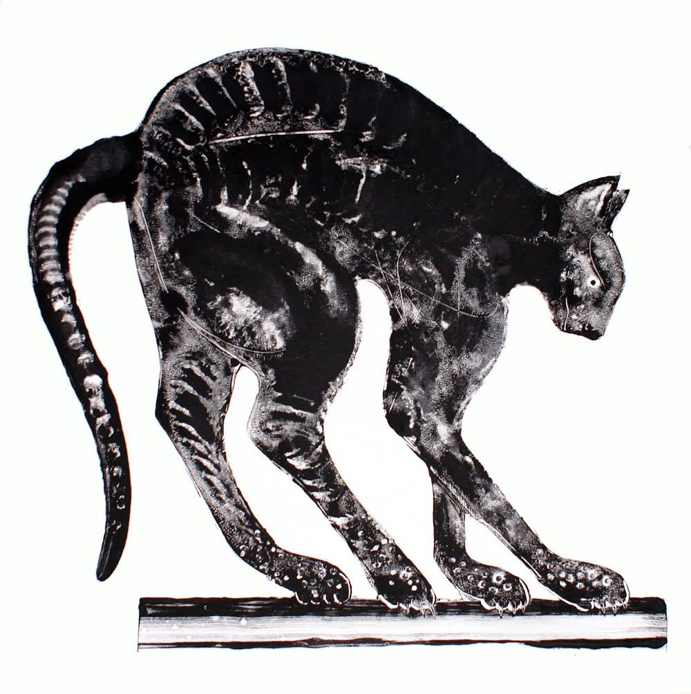 Stuart MacKenzie RSA Black Cat Oil on paper 84 x 84 cm