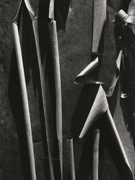 Ansel Adams, Madrone Bark, 1932