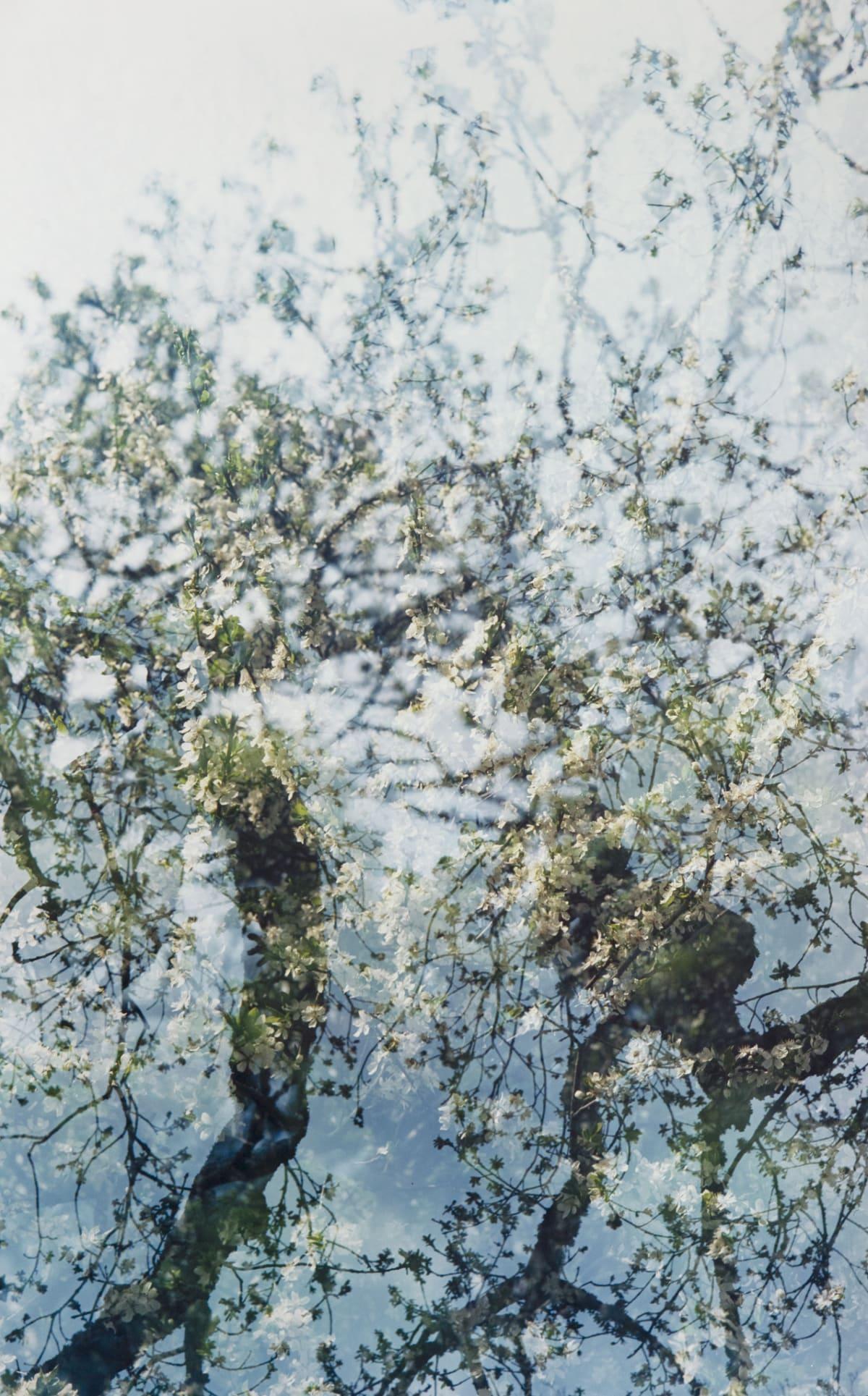 Erle M. Kyllingmark, Untitled Journey #14, 2018