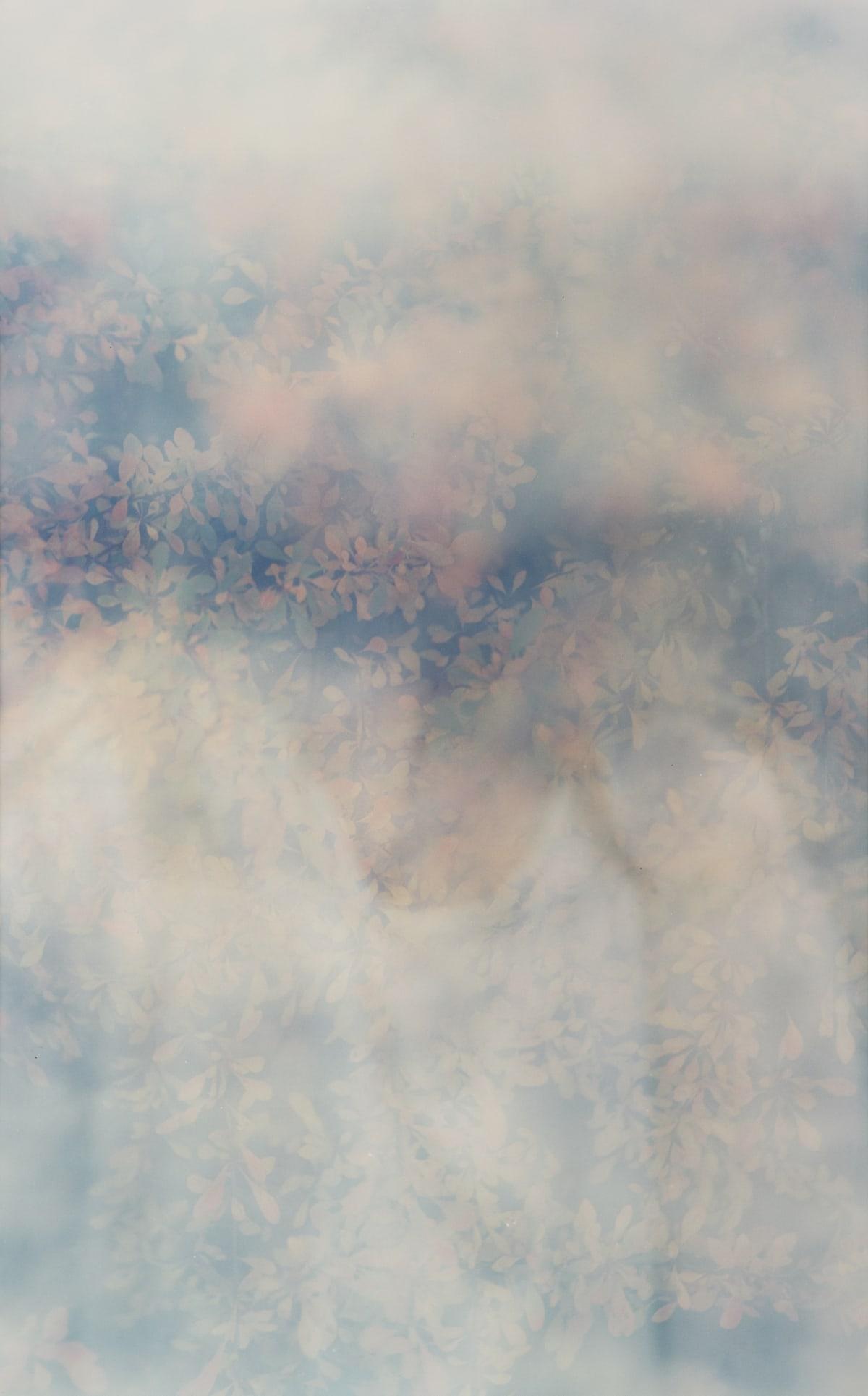 Erle M. Kyllingmark, Untitled Journey #8, 2018