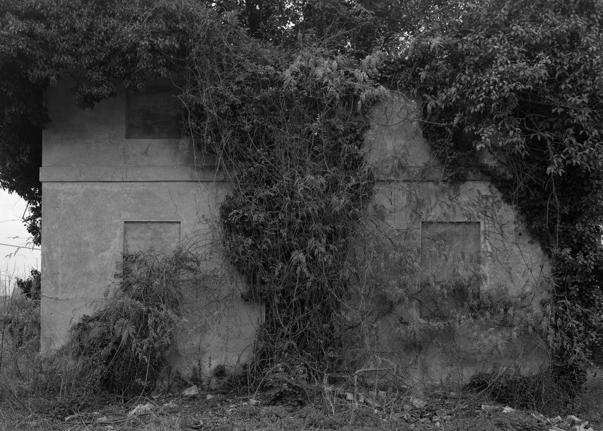 Dag Alveng, Untitled, Palladio Songs, 2019