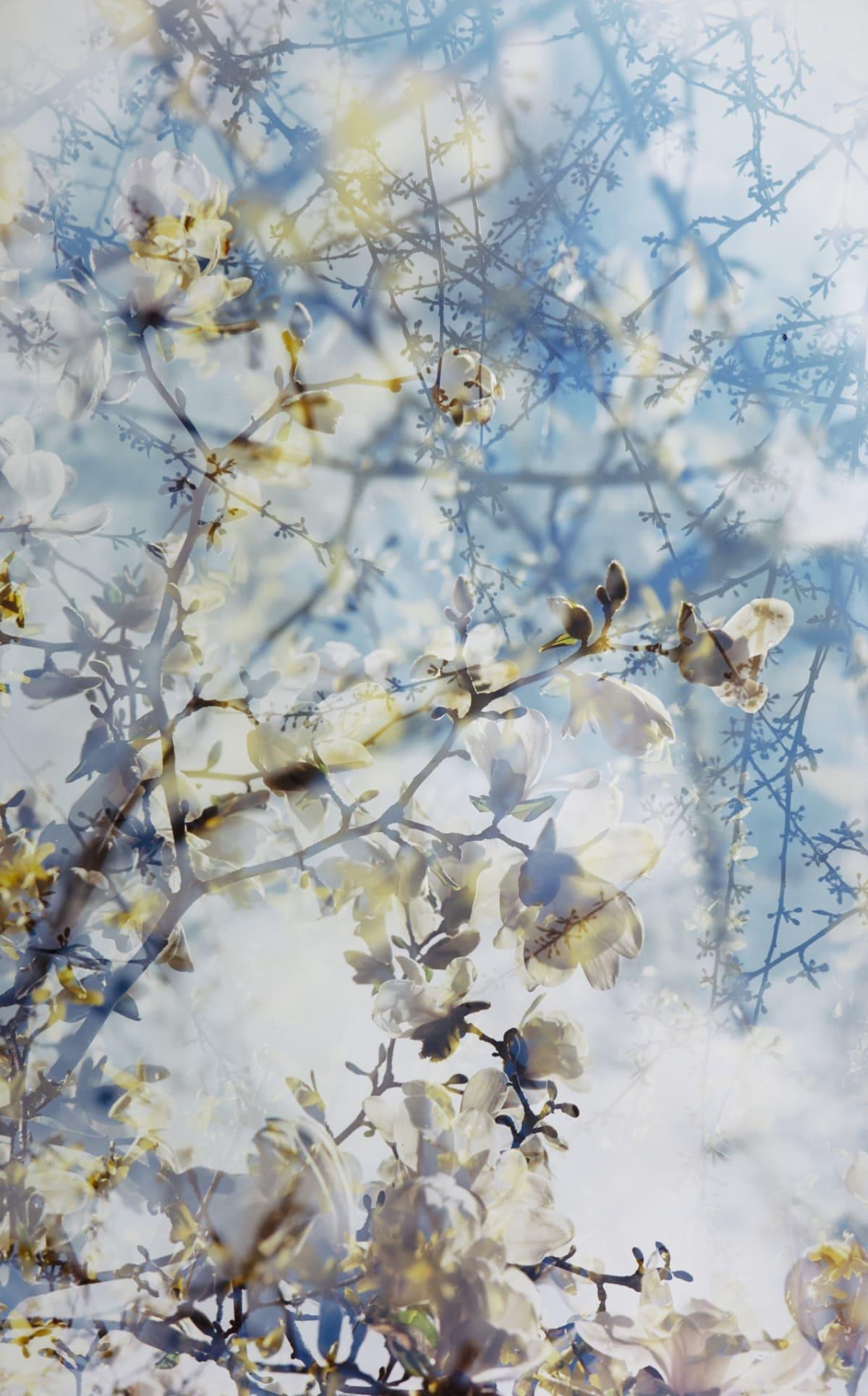 Erle M. Kyllingmark, Untitled Journey #2, 2018