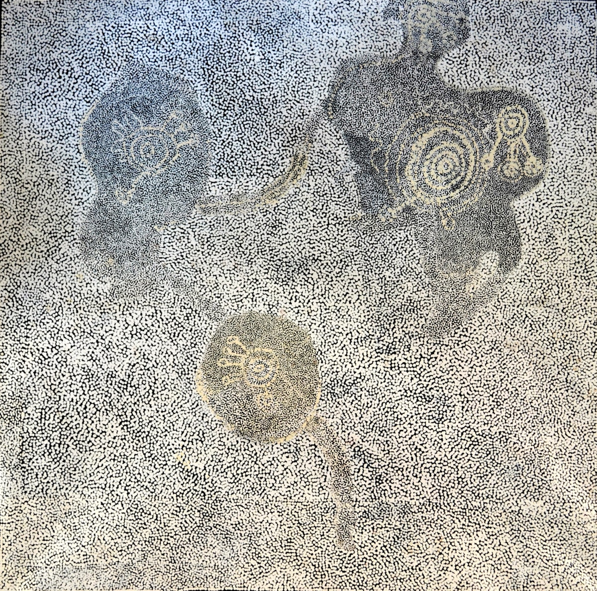 Matjangka (Nyukana) Norris Ngura Pilti - Dry Country acrylic on linen 153 x 153 cm