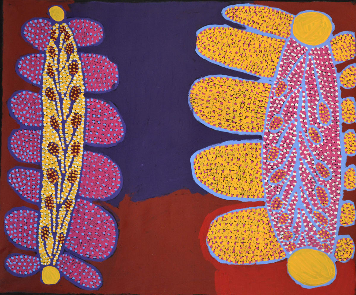 Kunmanara Williamson Ultukunpa - Honey Grevillea acrylic on linen 101.5 x 122 cm