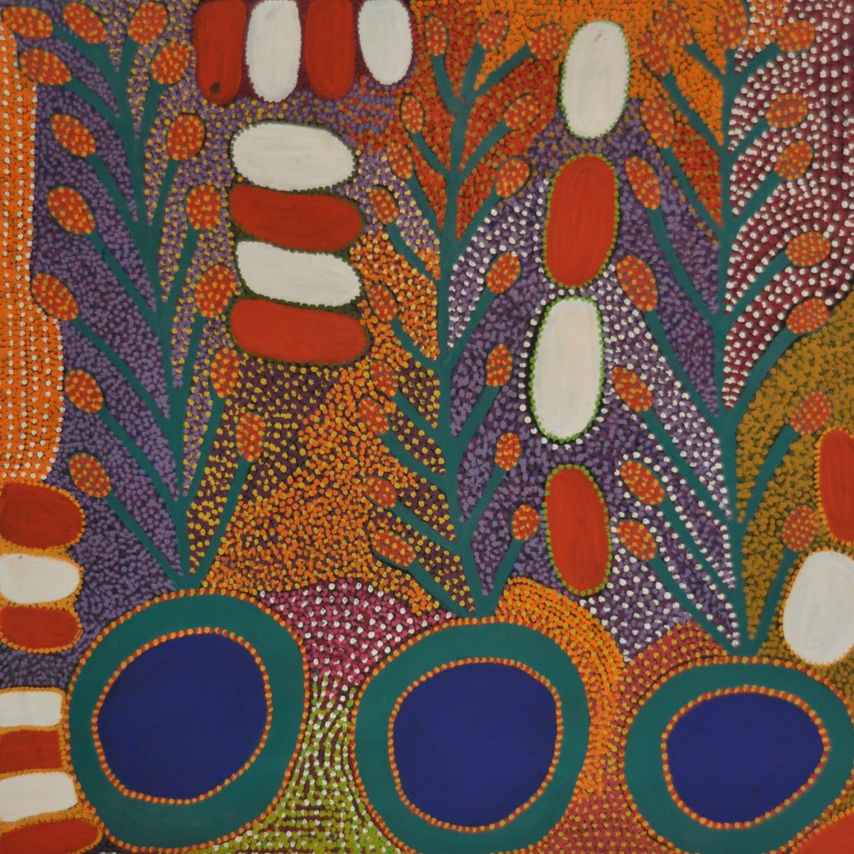 Kunmanara Williamson Ngayuku ngura- My Country acrylic on linen 122 x 122 cm