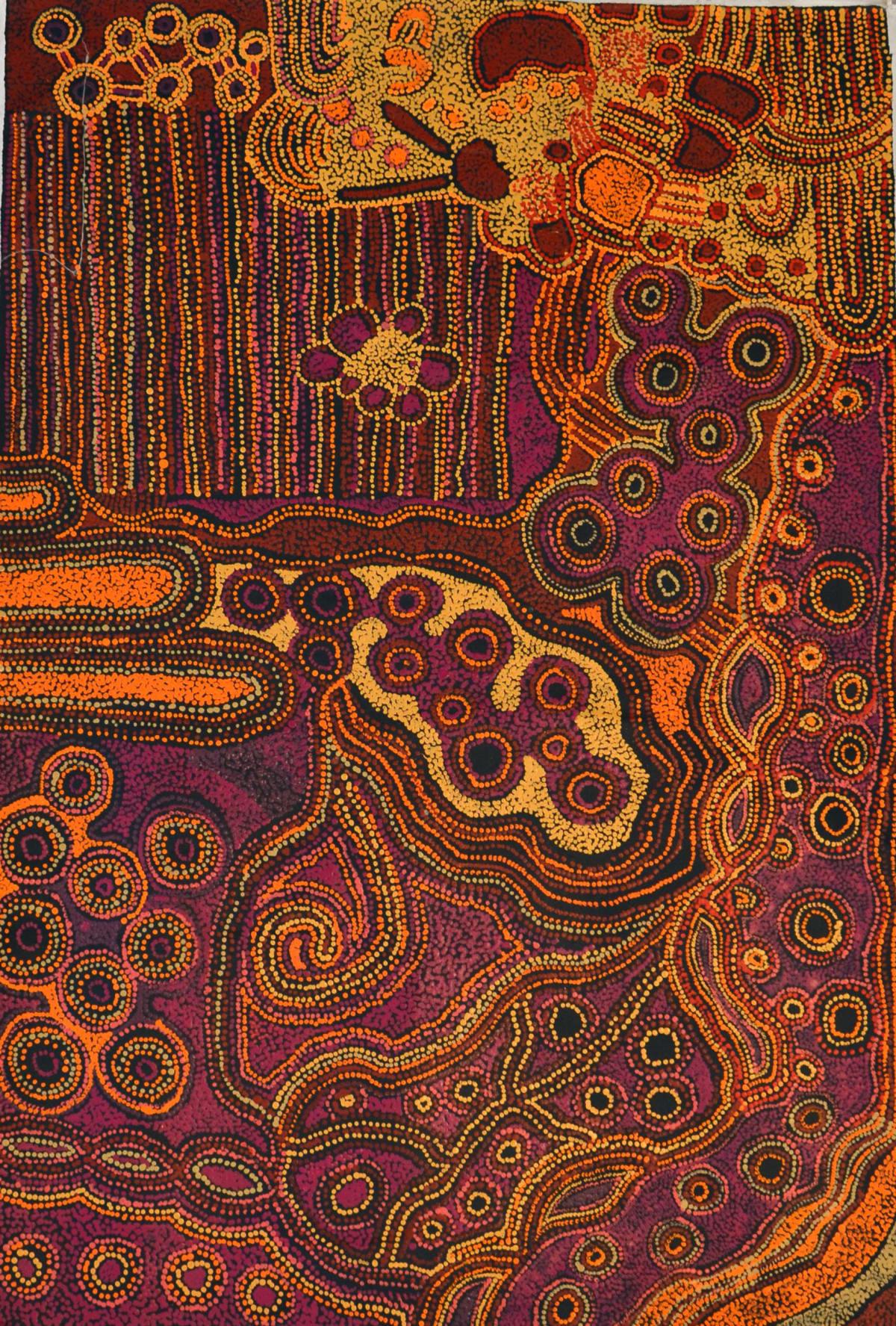 Kani Patricia Tunkin Malilu Tjukurpa acrylic on linen 100 x 150 cm