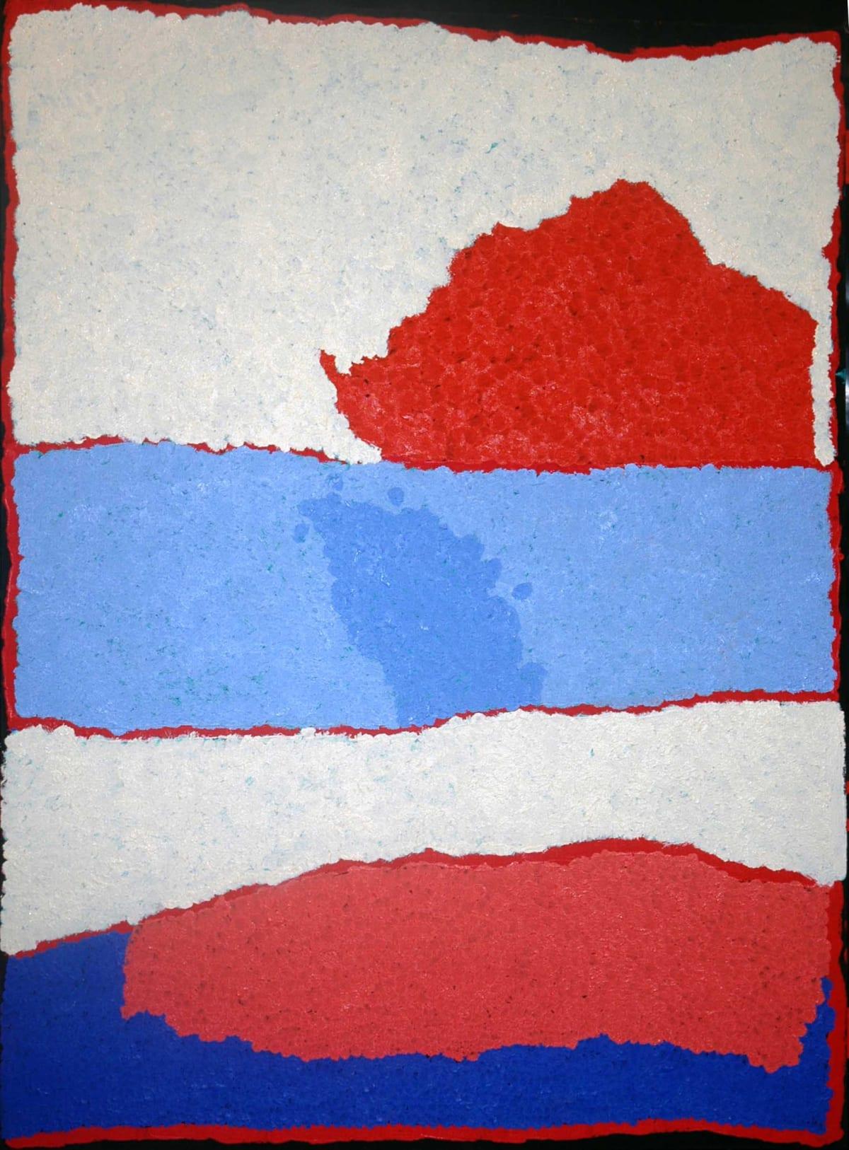 Alma Webou (Kalaju) Pinkalarta acrylic on linen 107 x 76 cm