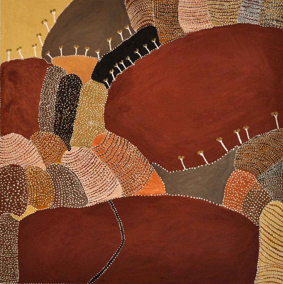 Patrick Mung Mung Gairrawarran, Ground Sugarbag natural ochre and pigments on canvas 150 x 150 cm