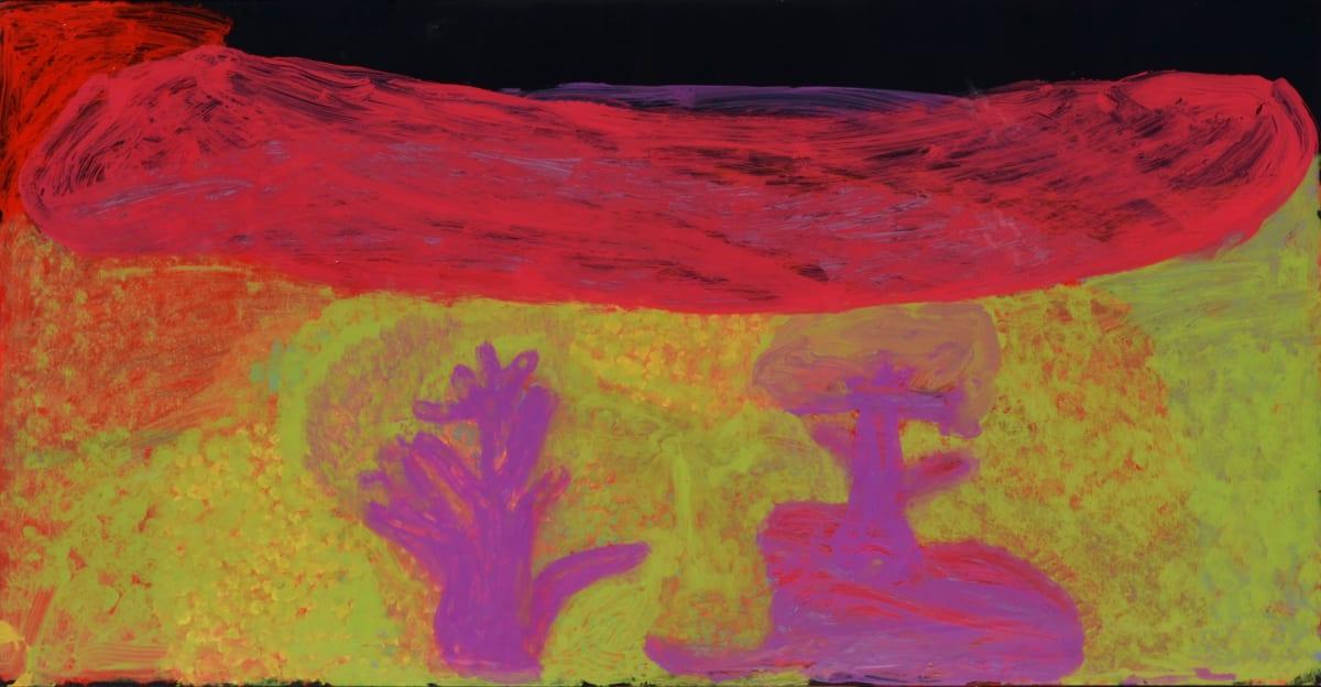 Nada ( Tjigilia) Rawlins Yimirri acrylic on polycarbonate 60 x 120 cm