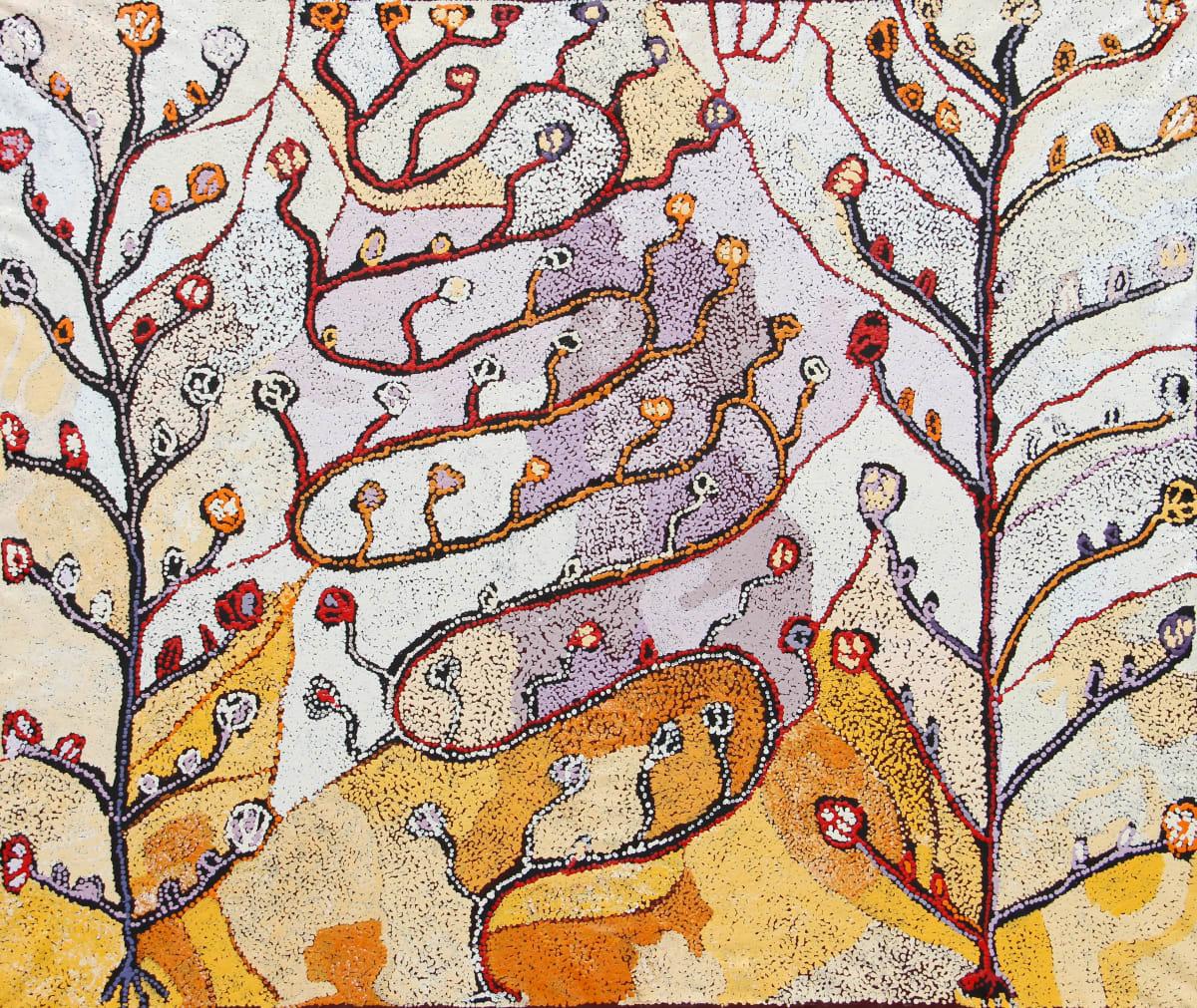 Nellie Coulthard Tjuntala Ngurangka (Country with Acacia Wattle), 2018 Acrylic on Linen 167 x 198 cm