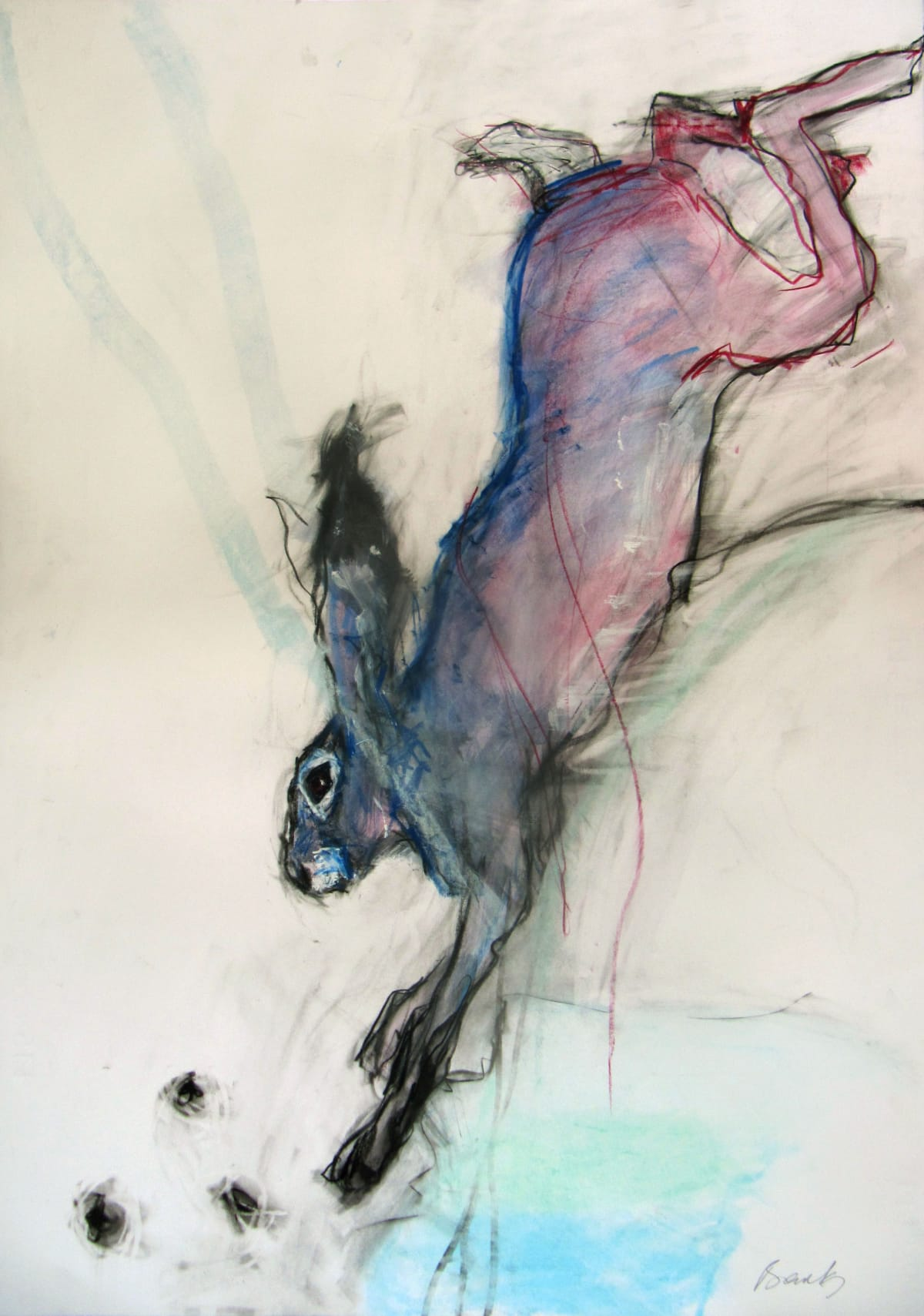The Sudden Leap of the Hare