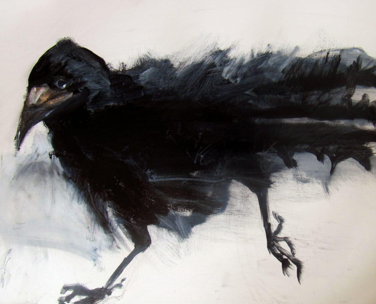 The Exquisite Crow