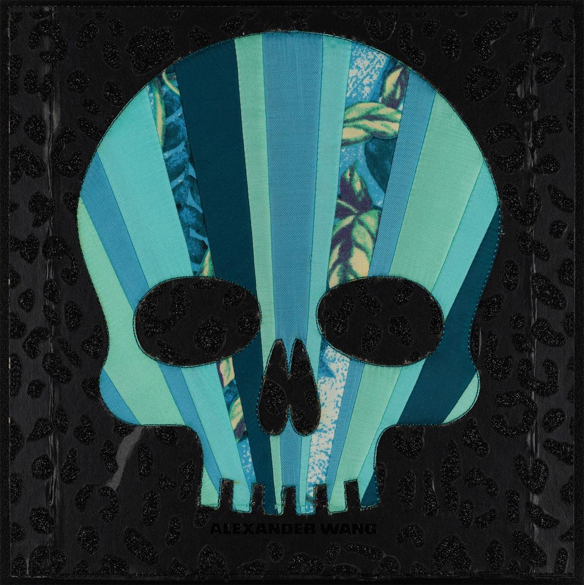 Stephen Wilson, A.W. Skull (Teal), 2019