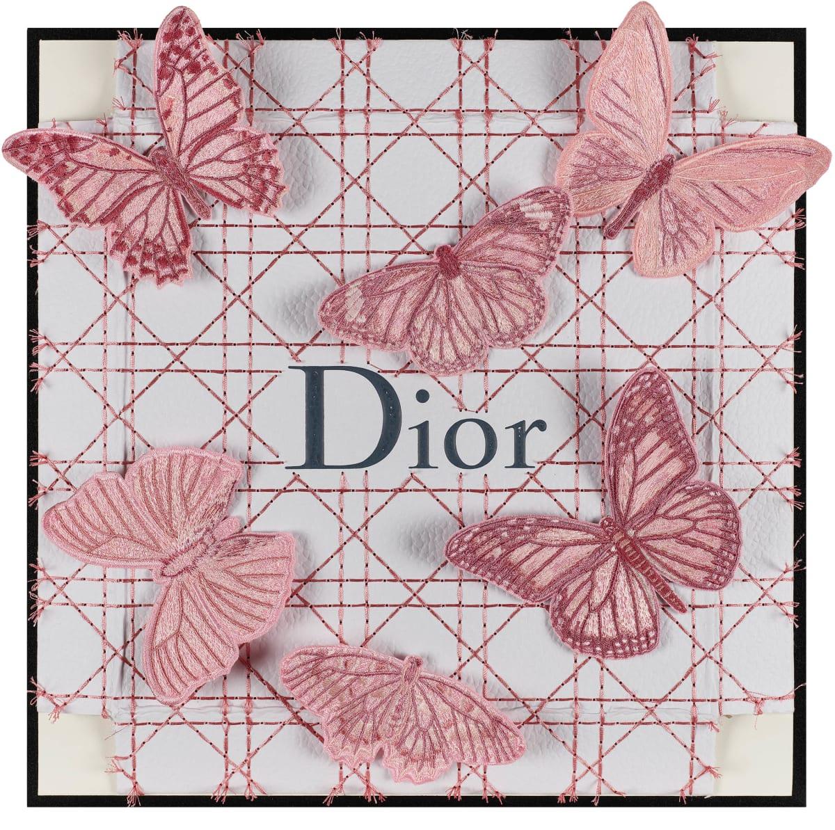 Stephen Wilson, Dior Pink Flutter II, 2019