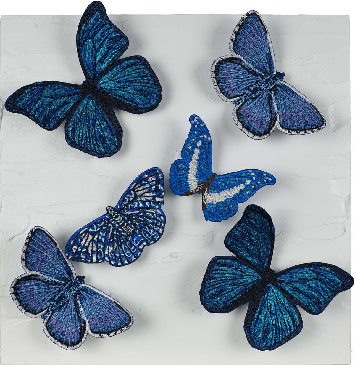 Modularity Butterflies