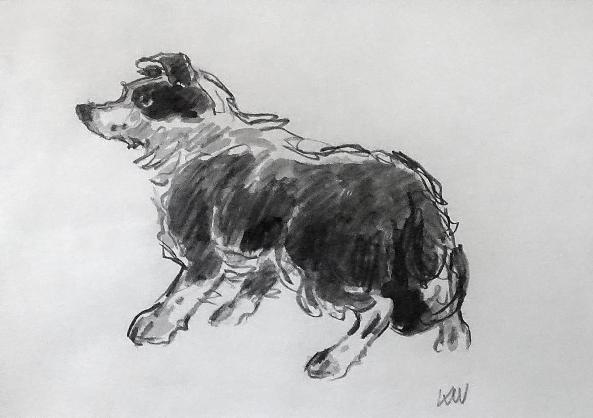 Kyffin Williams, Sheepdog, circa 1997