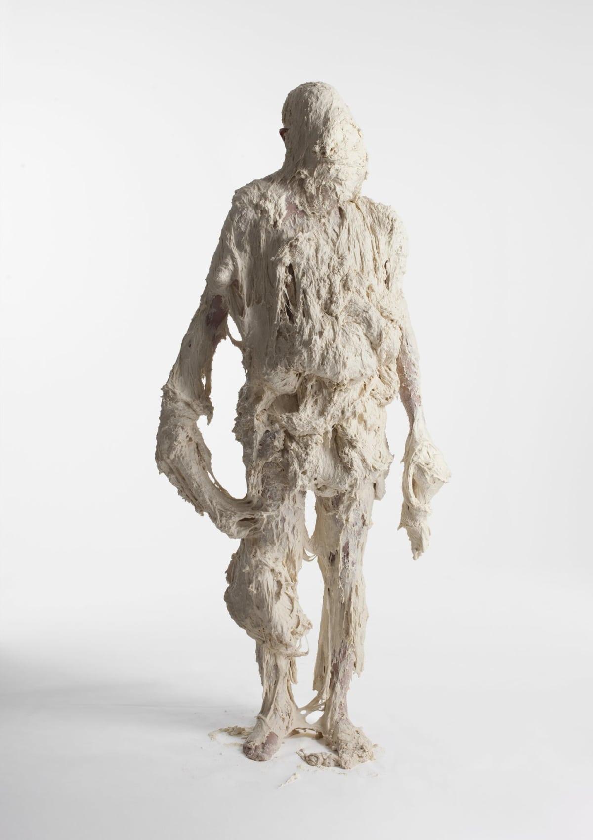 Marcus Coates, Mayfly, Ephemeroptera (Subimago stage) Self Portrait, flour and water, 2013
