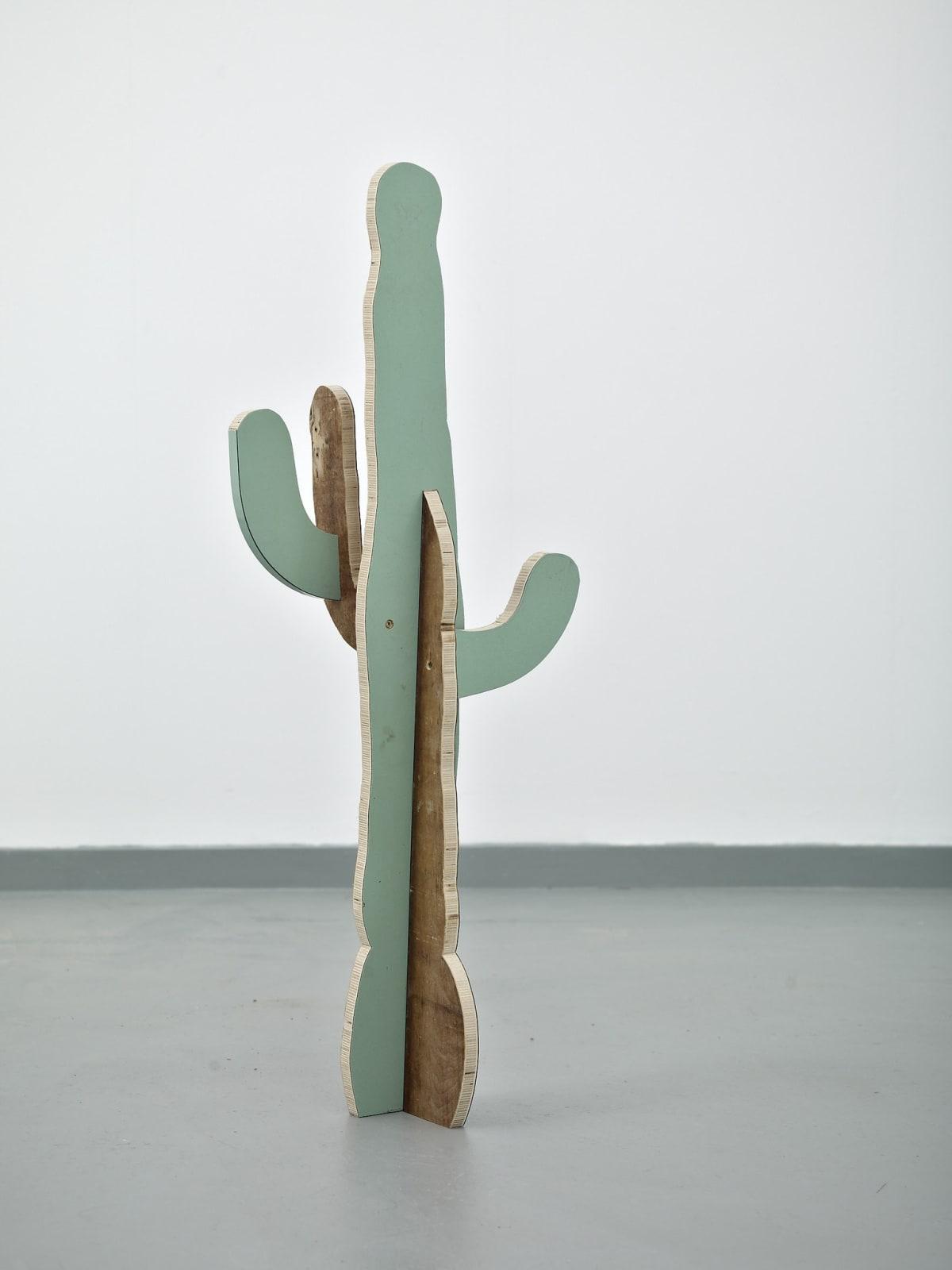 Paul Merrick, Cactus (Saguaro), 2014