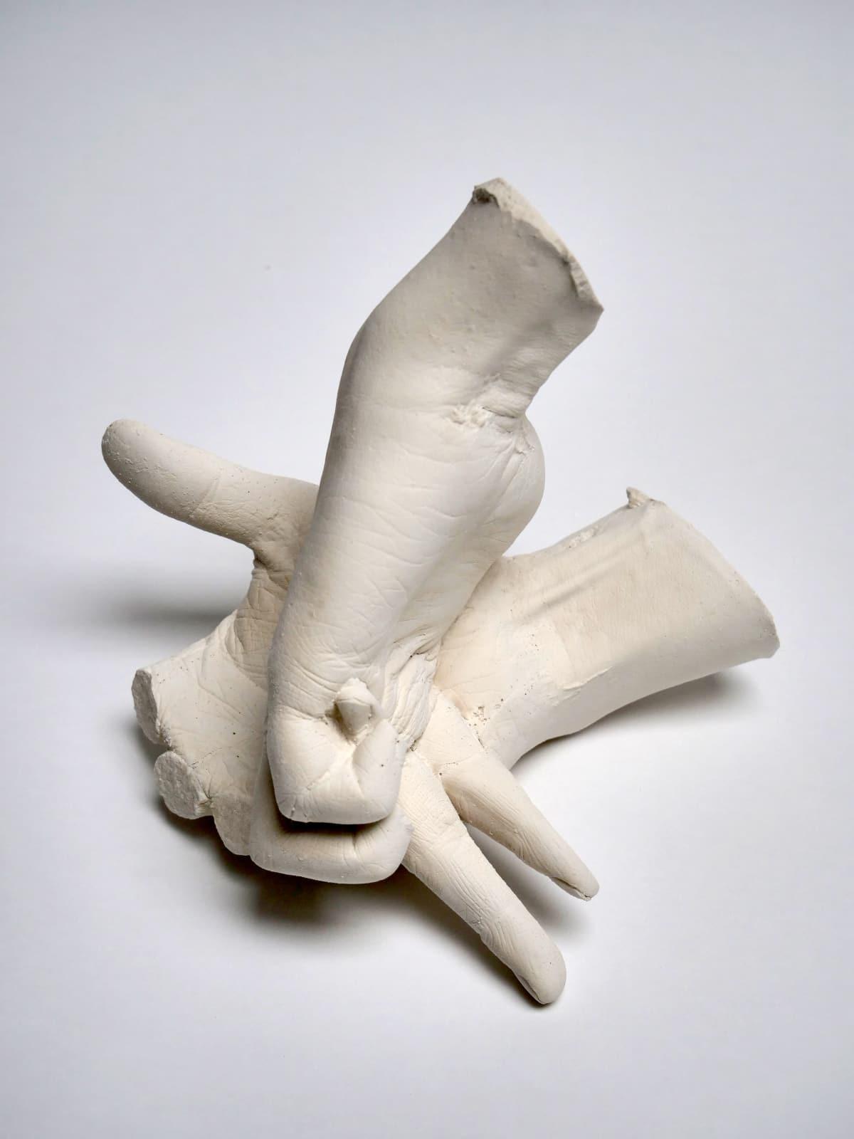 Marcus Coates, Extinct Animals (Yangtze River Dolphin), 2018