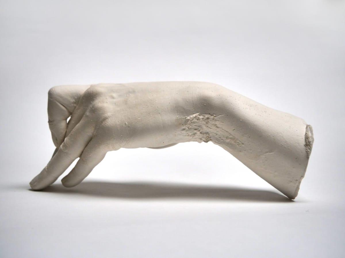 Marcus Coates, Extinct Animals (Japanese Honshu Wolf), 2018