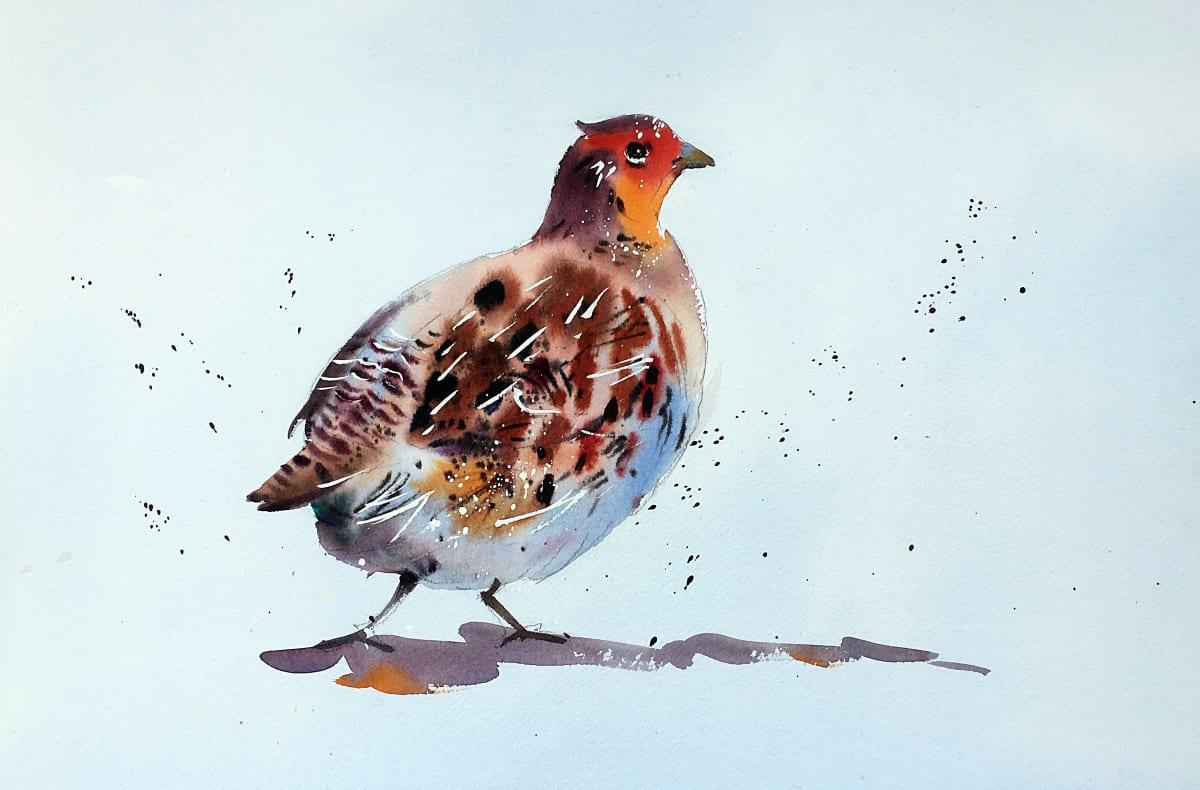 Jake Winkle ENGLISH PARTRIDGE Watercolour 13 x 18 in 33 x 45.7 cm