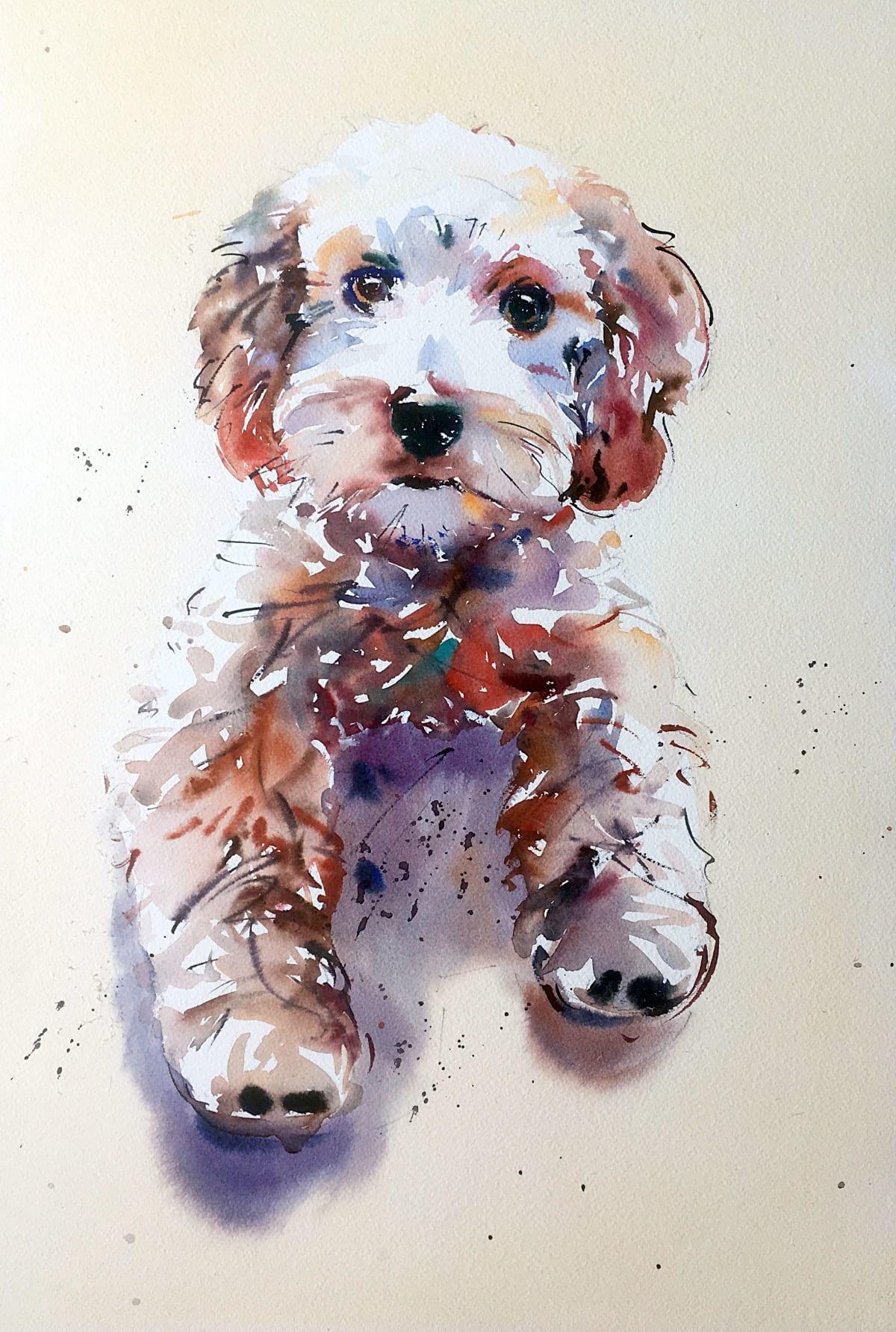 Jake Winkle CUTE COCKERPOO Watercolour 18 x 13 in 45.7 x 33 cm