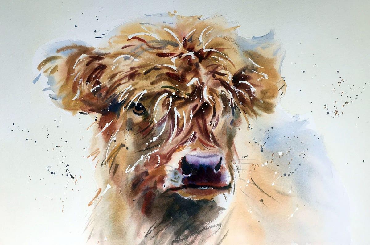 Jake Winkle HIGHLAND CALF Watercolour 13 x 18 in 33 x 45.7 cm