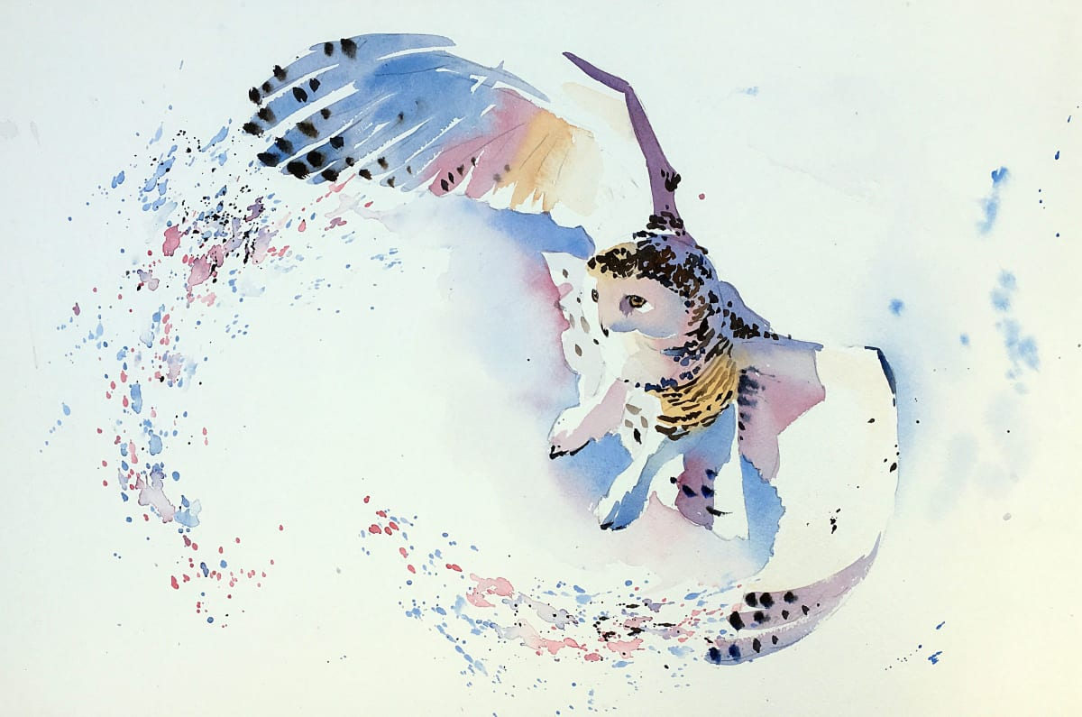 Jake Winkle SNOWY OWL Watercolour 13 x 18 in 33 x 45.7 cm